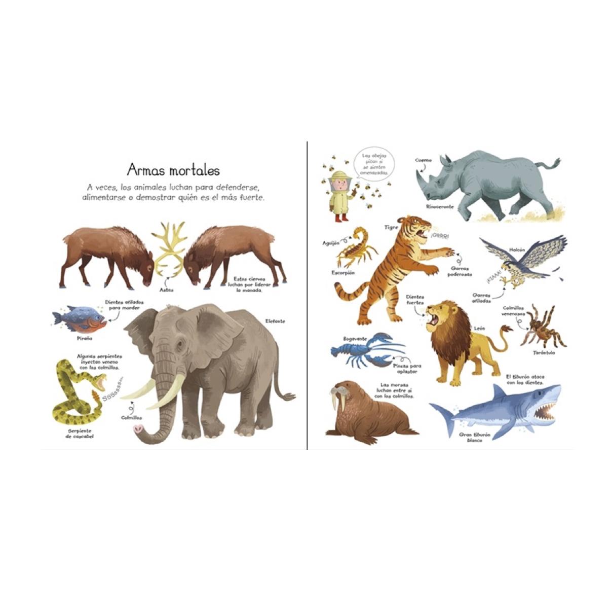 mi-primer-libro-sobre-los-animales-de-usborne-en-el-mundo-de-mico2