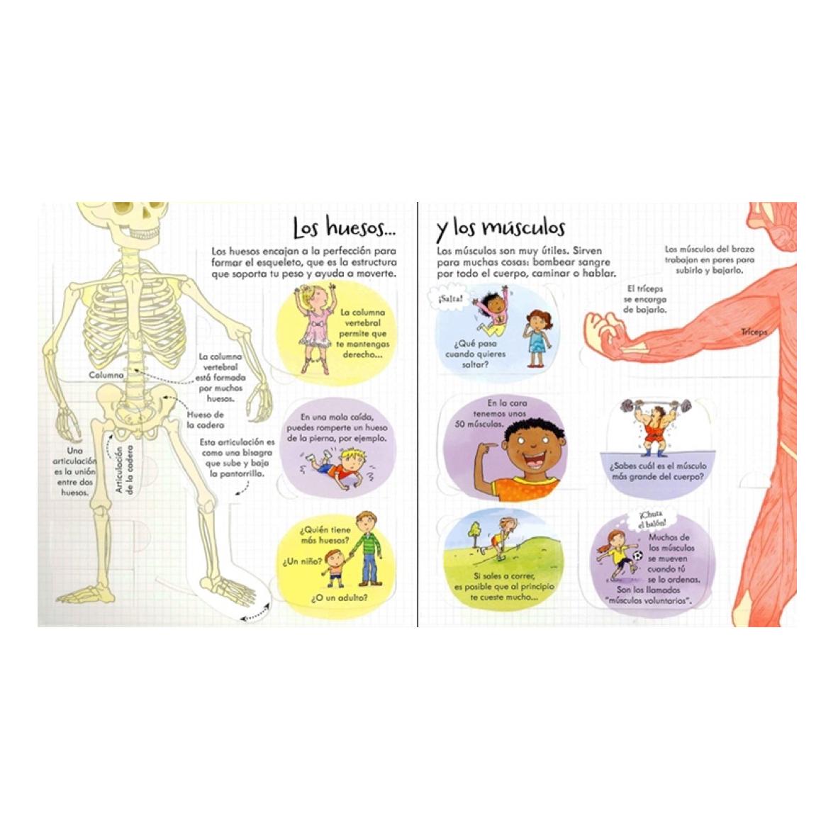 100-cosas-que-saber-el-cuerpo-humano-usborne-el-mundo-de-mico4