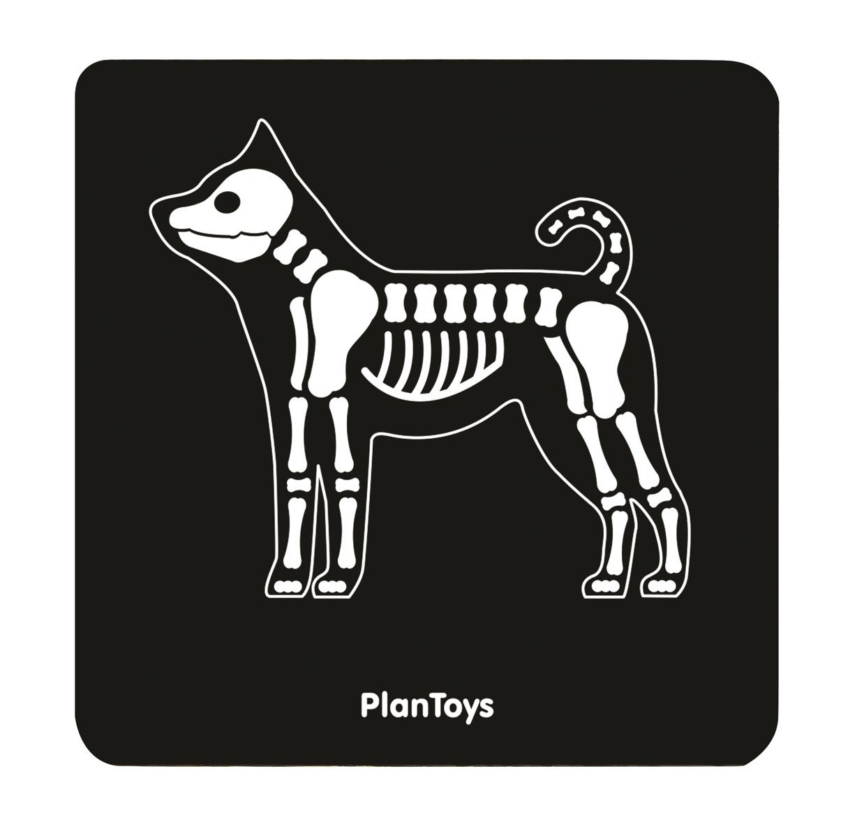 set-veterinario-plantoys-el-mundo-de-mico6