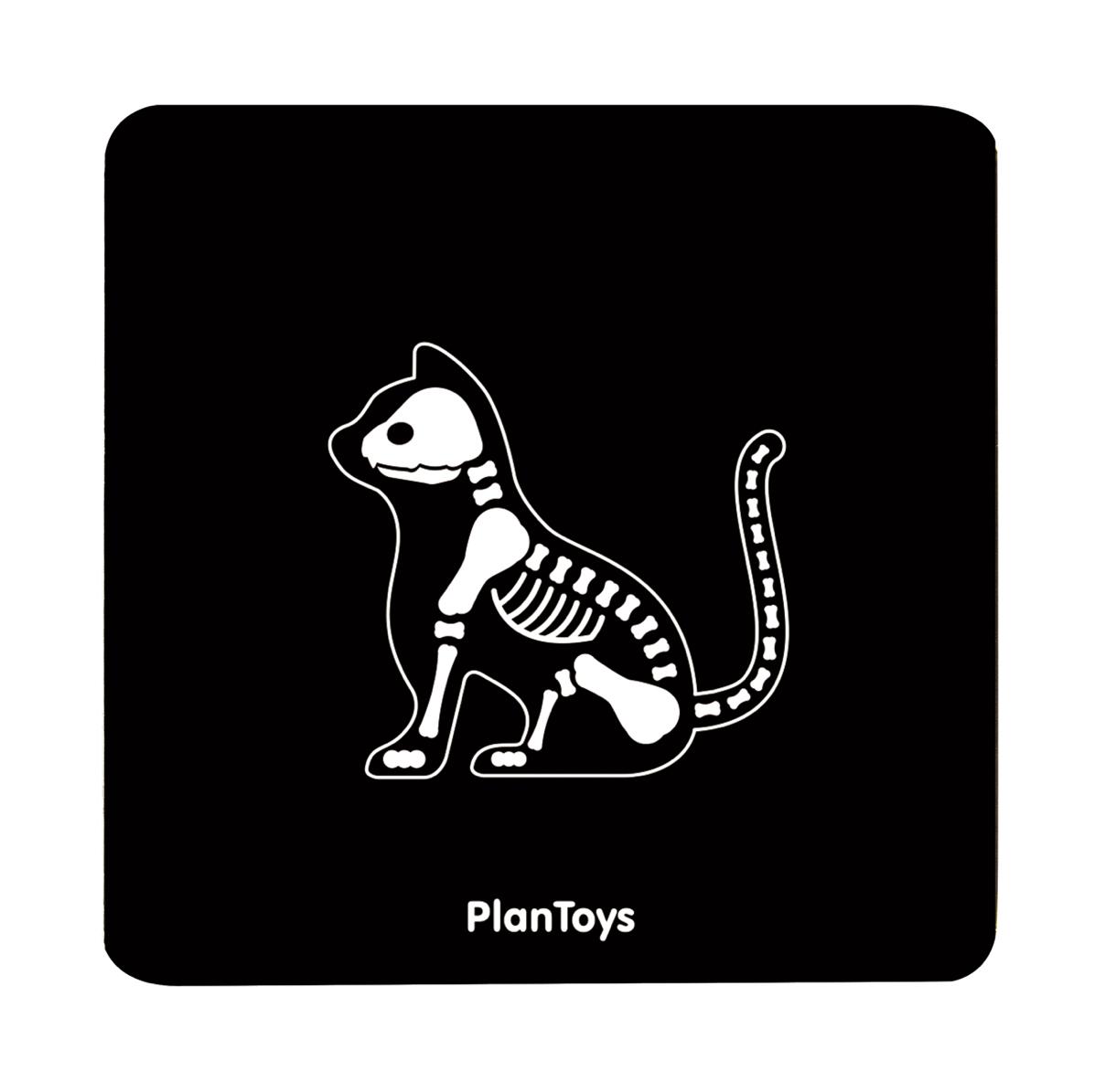 set-veterinario-plantoys-el-mundo-de-mico7