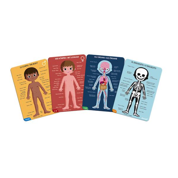 puzzle-educativo-cuerpo-humano2